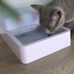 Pet Clever Drinking Fountain For Freshest Water! Cat Bowls & Fountains Pet Clever Full Pack Water Dispenser