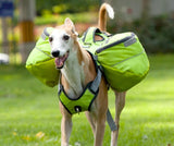 Pet Saddle Backpack Harness Dog Harness Pet Clever