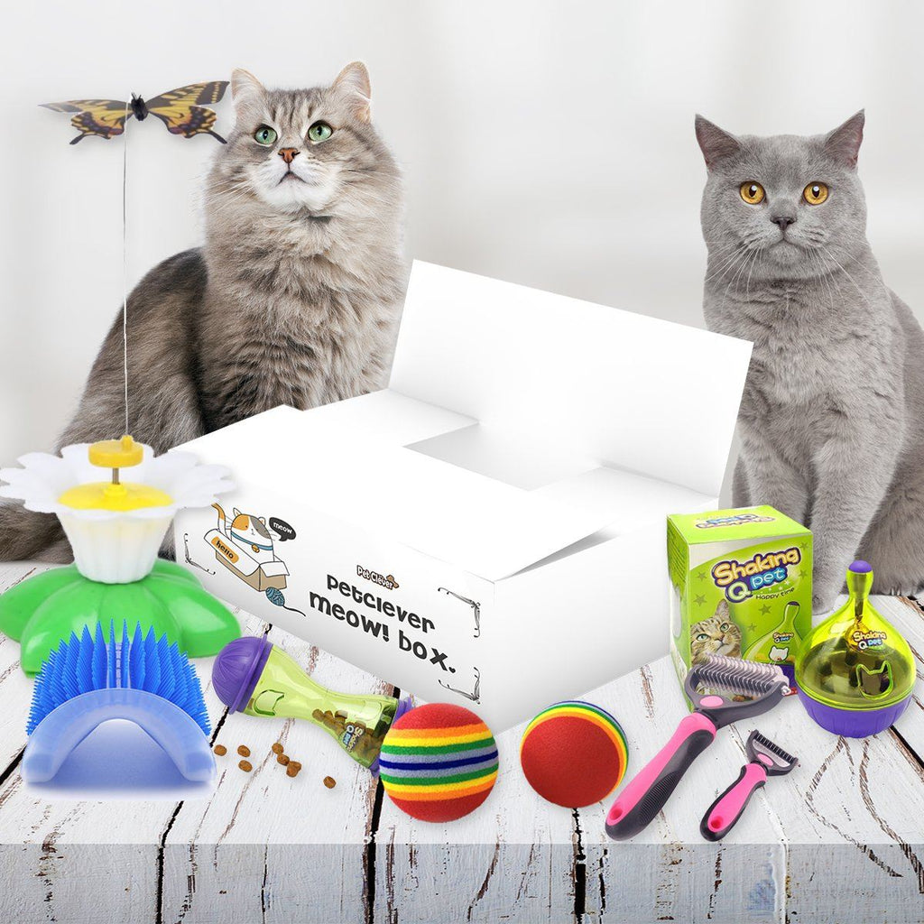 PetClever Meow! Box Cat Subscription Pet Clever Classic Box Monthly