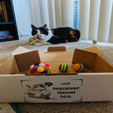 PetClever Meow! Box Cat Subscription Pet Clever