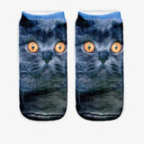 Purrfect Cat Ankle Socks Cat Design Accessories Pet Clever 18