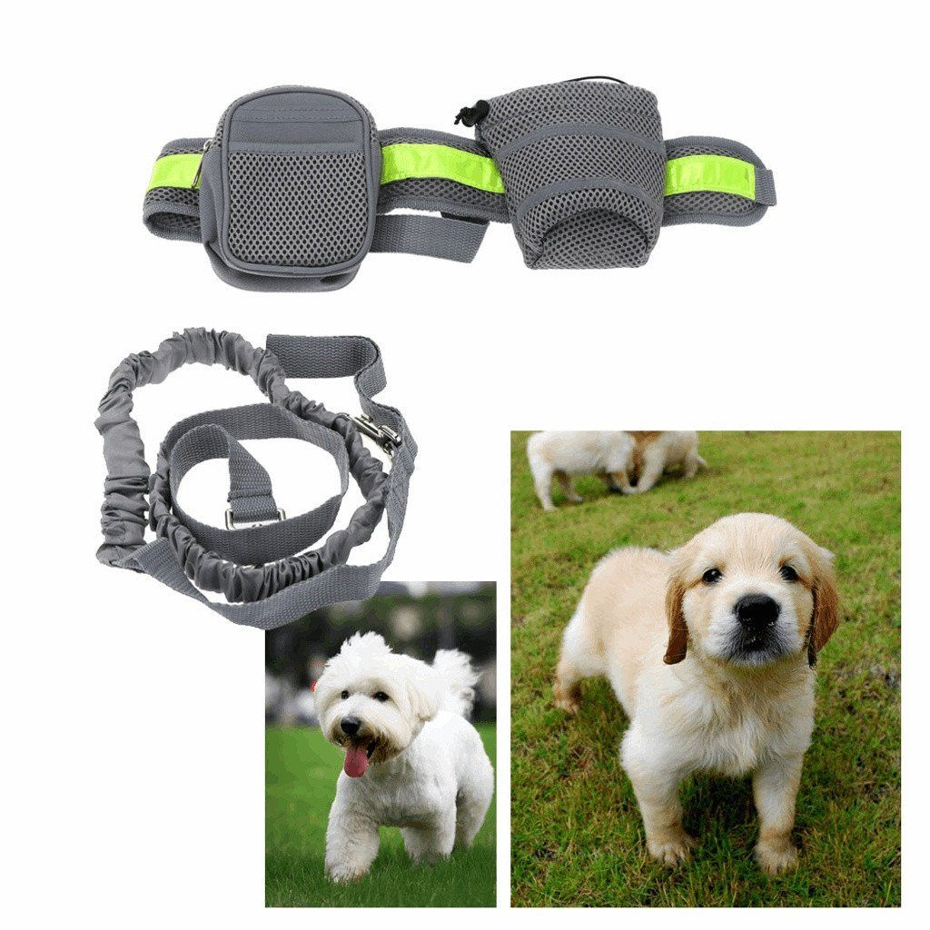 Running Leash For Pets Dog Dog Leads & Collars Pet Clever