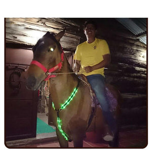 Safety Double LED Light Racing Equestrian Horse Neck Belt Accessory Horse Collars Pet Clever