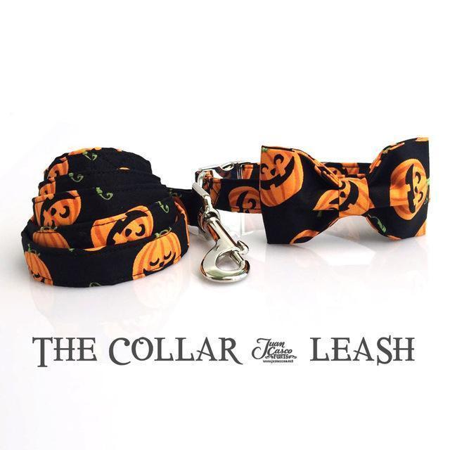 The Pumpkin™ Fashion Pet Set of Collar & Leash Artist Collars & Harnesses Pet Clever collar bow and leash XS