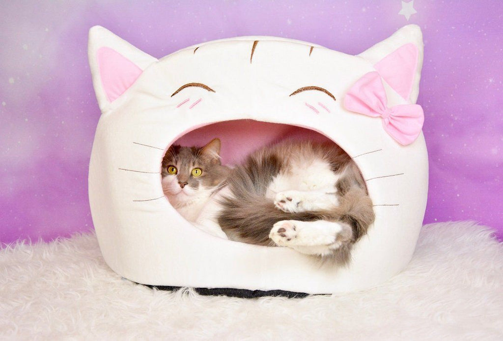 This Cat Bed Keep Your Cat Feeling Calm and Relaxed Cat Beds & Baskets Pet Clever White
