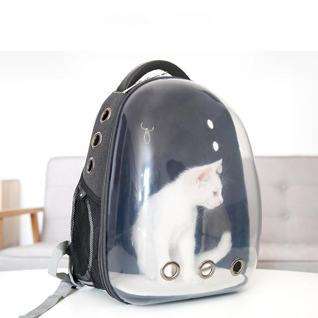 Transparent Backpack Capsule Shaped Pet Carrier Cat Carriers Pet Clever Black