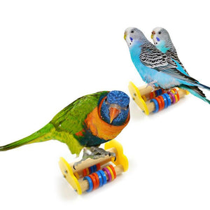 Wood Skateboard Training Bird Toy Training Toys Pet Clever