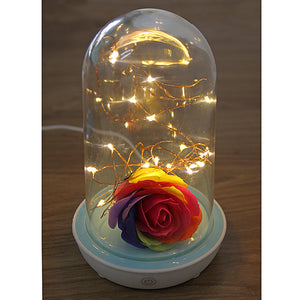 Light Bottle - Flower Streamer Lamp
