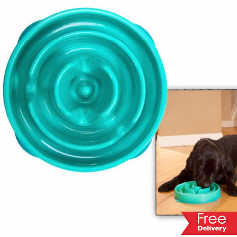 Slo-Bowl Feeder For Dogs For R199.99 Including Delivery