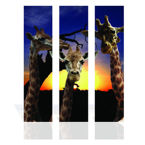 Canvas Prints - 90CM X 120CM 3 Panel Giraffe Sunset Wall-Art Print