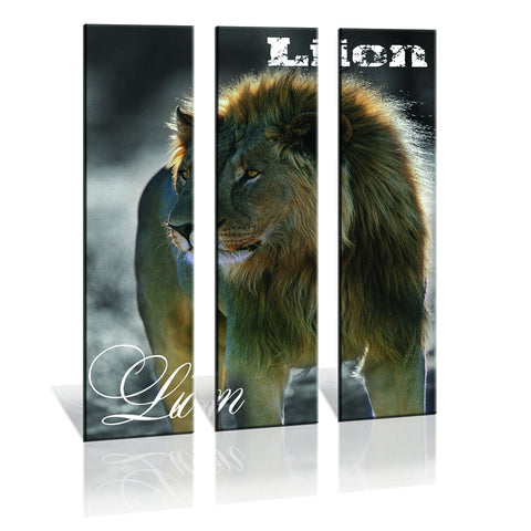 90CM x 120CM 3 Panel Lion Alpha-Male Canvas Painting