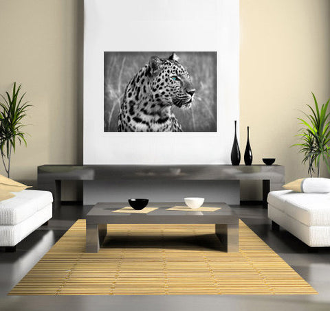 Blue-Eyed Leopard Canvas Print