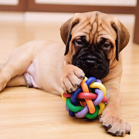 Rubber Rainbow Jingle Bell Ball For Pets