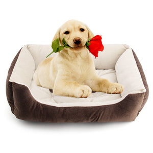 Selection of Super Comfy Pet Beds in various sizes from R199.99 - iDealDirect - 1