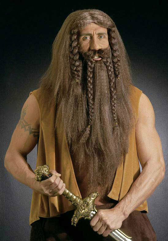 Long Viking Wig and Beard Mens Medieval Fancy Dress Costume Accessory Saxon NEW