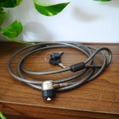Cable antivol PC