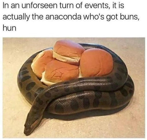 DHC Monthly Meme Roundup September Anaconda Got Buns