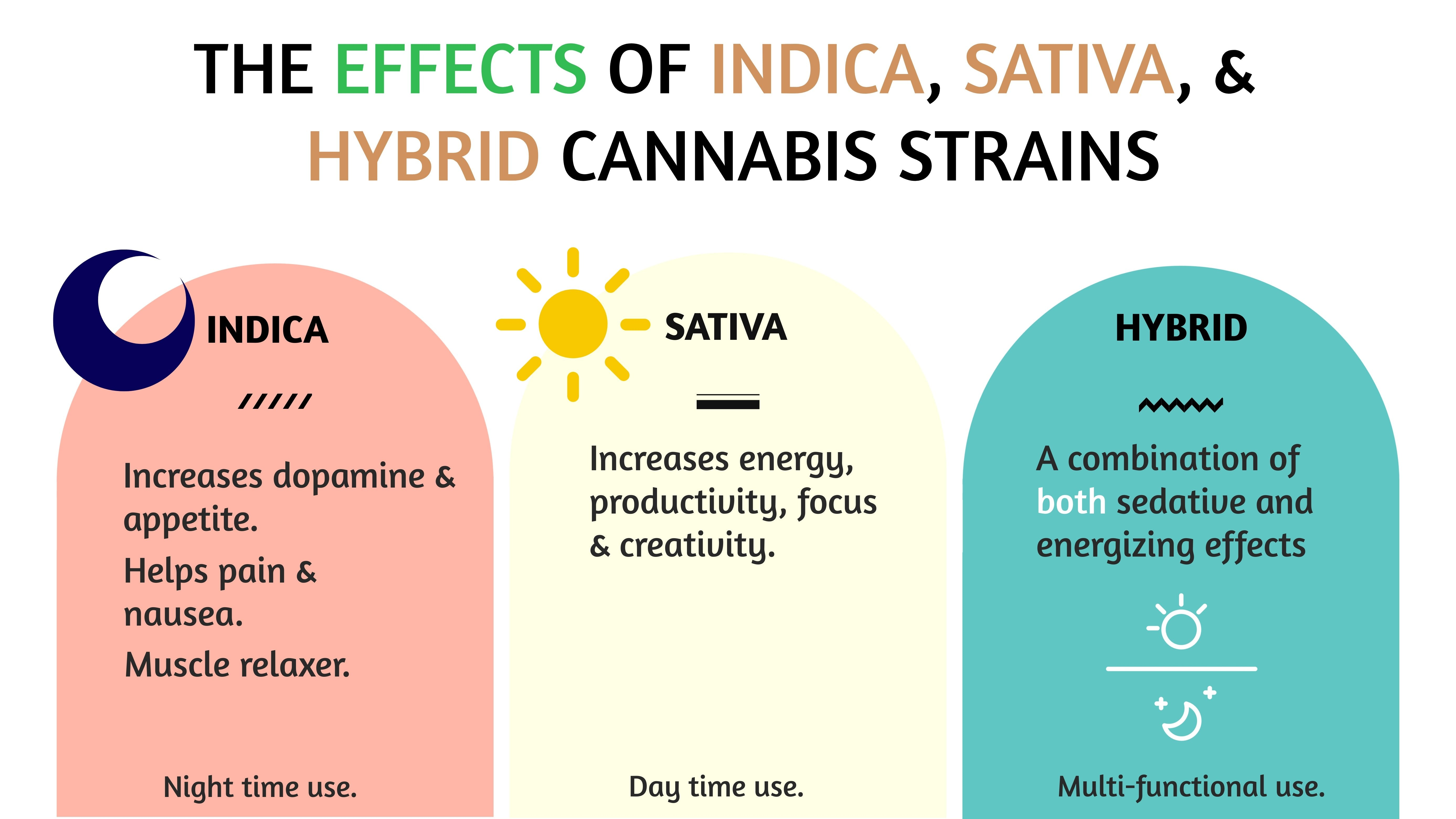 the effects of indica sativa hybrid cannabis strains