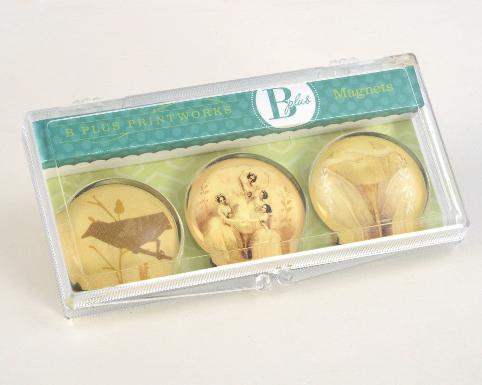 Glass Magnet Set - Pas De Quatre