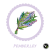 V2 Candle ~ Pemberley