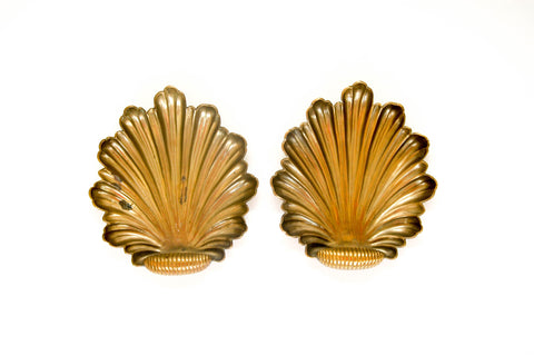 Brass Shell Wall Plates