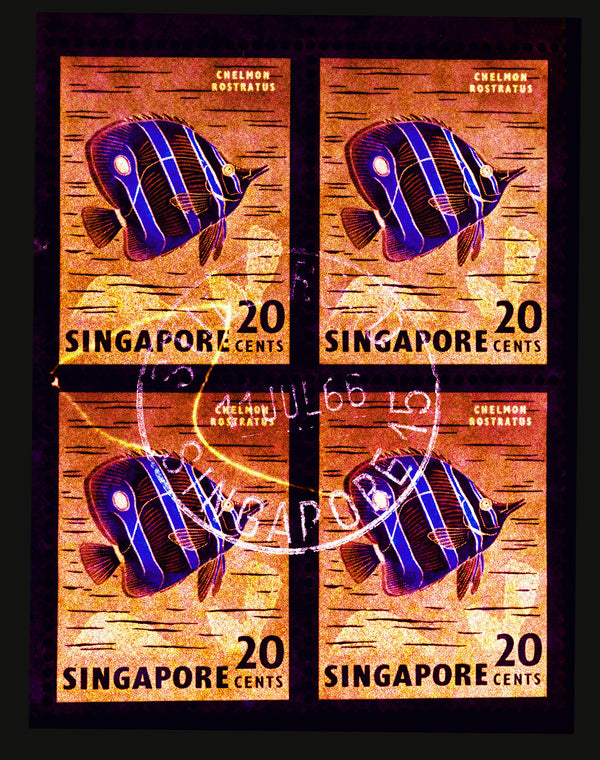 20 Cents Singapore Butterfly Fish (Gold), from the 2018 Singapore Series, Postcards from afar.