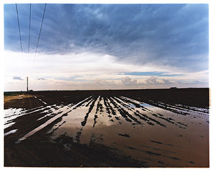 Water Logged Field II, near Bothaville, 2009