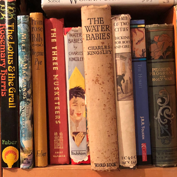 Vintage books on a shelf in a secondhand book shop.
