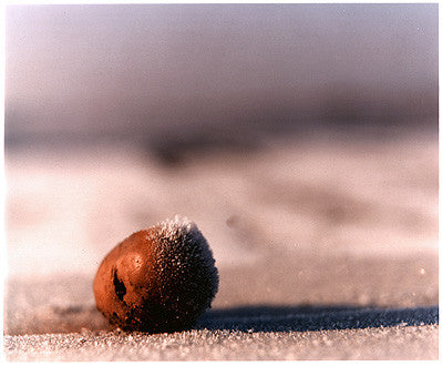 0°00' longitude, 52°35N' latitude, Frozen Potato, Wisbech St Mary's Wash 2000