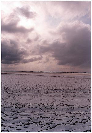 0°00' longitude, 52°28N' View from Vermuden's Drain, Cambridgeshire 2001