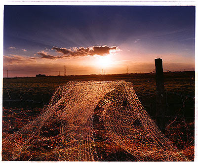 Fishing Net - Oozedam, Fobbing Marshes 2004