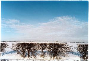 Oakington Road - Hedgerow, Cottenham, Cambridgeshire 2003
