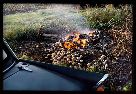 Burning Potatoes, Honey Hill, Cambridgeshire 1993