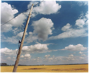 Telephone Pole II, White Horse Road, Cambridgeshire 2005