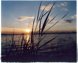 Martham Broad, Norfolk 2005
