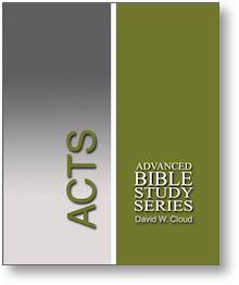 Acts (Advanced Bible Study Series) - Book Heaven - Challenge Press from WAY OF LIFE