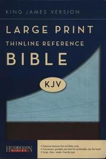 Large Print Thinline Reference KJV Bible - Book Heaven - Challenge Press from SPRING ARBOR DISTRIBUTORS - 2