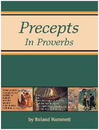 Precepts in Proverbs - 26 Topical Lessons from the Book of Proverbs (Reproducible CD Included)