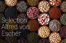 Selection Alfred von Escher
