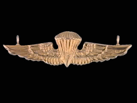 14kt Jump Wing Pendant