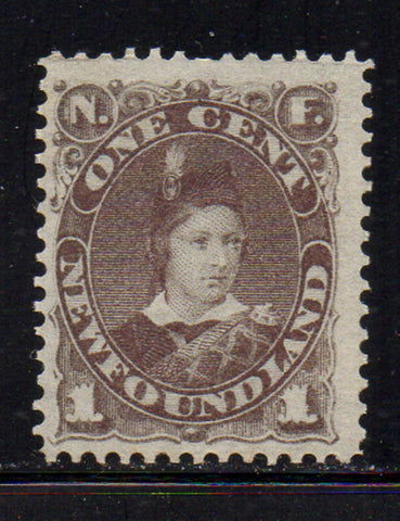 Newfoundland Scott 42 1889 1c gray brown Prince of Wales stamp mint