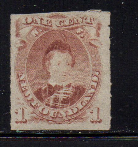 Newfoundland Scott 37 1877 1c Prince of Wales rouletted stamp mint