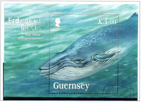Guernsey Scott  1124 2011 Endangered Species Blue Whale stamp sheet used