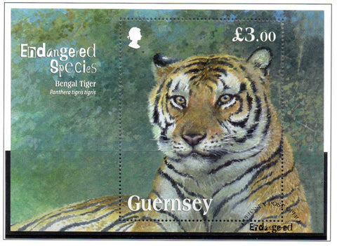 Guernsey Scott  1153 2012 Endangered Species Bengal Tiger stamp sheet used