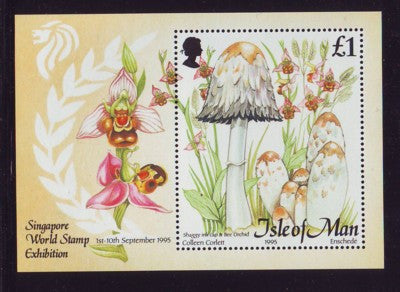 Isle of Man Scott 655 1995 Mushrooms stamp sheet mint nh