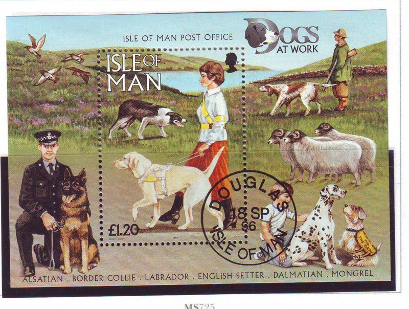 Isle of Man Scott 722 1996 Dogs stamp sheet used