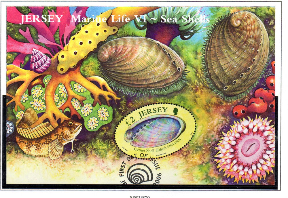 Jersey Scott 1213 2006 Sea Shells stamp souvenir sheet used