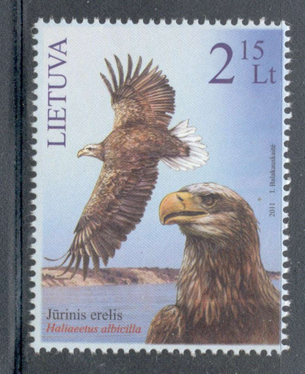 Lithuania Sc 954 2011 White Tailed Eagle stamp mint NH