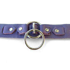 TITAN Leather Collar - New!