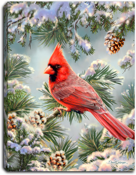 Snowy Pine Cardinal - Lighted Tabletop Canvas 8x6